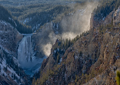 Late afternoon at Grand Canyon of the Yellowstone (scepdoll) Tags: findyourpark getoutside fall thermal westthumb yellowstonenationalpark autumn fir ice