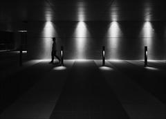 F_MG_8392-1-BW-1-Canon 6DII-Sigma 12-24mm-May Lee 廖藹淳 (May-margy) Tags: maymargy 心情的故事 bw 黑白 人像 剪影 通道 電燈 花崗岩 地坪 夜晚 幾何構圖 點人 點物 街拍 線條造型與光影 天馬行空鏡頭的異想世界 心象意象與影像 新北市 台灣 中華民國 fmg83921bw1 portrait corridor lights evening granite pavement humaningeometry humanelement streetviewphotography mylensandmyimagination linesformandlightandshadow naturalcoincidencethrumylens newtaipeicity taiwan repofchina canon6dii sigma1224mm maylee廖藹淳