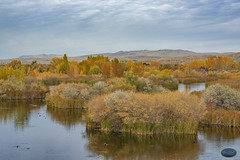 Hyatt Not Hidden (TheArtOfPhotographyByLouisRuth) Tags: hyatthiddenlakesreserve idaho boise boiseparks fallcolors fall colors oragne autumn landscape mountains sky hills artofimages water grass tree wood field forest flickrglobal nikon nikonprime nikonf18 beautifulcapture