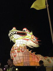 moon lantern festival 2018-31 (bill doyle [mobile]) Tags: moonlanternfestival color iphone7plus 2018 colorful elderpark billdoyle adelaidefestival ozasia lights communityevent southaustralia southaustralian community ozasiafestival sa lanternparade moonlantern adelaide colourful colour lantern iphone7 parade