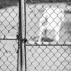Away... (TablinumCarlson) Tags: amerika america karibik caribbean sea gulf mexico atlantic ocean cuba republic antilles antillen kuba beach varadero leica m m240 summicron coast küste caribean hicacos cárdenas stuhl plastikstuhl stapelstuhl weis white bw sw zaun fence dof bokeh chair 90mm away black quadrat square plasticchair plastic