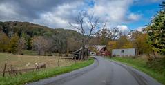 Farm on Cook's Run (Bob G. Bell) Tags: farm donkey sheep wv monroe lindside cooksrun clouds barn sky road fallcolors autumn bobbell xe2 fujifilm