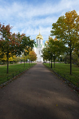 Golden domes. (fedoseenko) Tags: санктпетербург россия красота colour природа beauty blissful loveliness beautiful saintpetersburg sunny art shine dazzling light russia day green park peace garden blue white голубой небо лазурный color sky pretty sun пейзаж landscape clouds view heaven mood summer serene golden gold gate colours picture hall road tree grass nature alley history trees tsar stairway walkway field autumn outdoors old d800 wood cathedral church cupola holy orthodox path religion building foliage 1735mmf28d