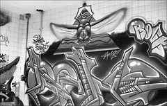 181111_Psiquiatrico_013 (Stefano Sbaccanti) Tags: bw blackandwhite analogicait analogue argentique bianconero leicam5 kentmere400 psiquiatrico asylum urbex urbanexploration abandonado 2018 50summicron spain
