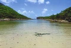 lagoon (omnia_mutantur) Tags: mare mar mer sea acqua water agua eau natura natureza naturaleza nature guadeloupe guadalupa francia frança france 971 antille antillas antilles caraibi caribe caribbean saintjacques portedelenfer caraïbes