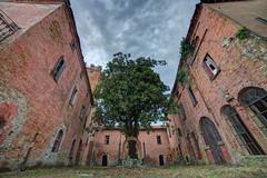 . (bluestardrop - Andrea Mucelli) Tags: urbex castello castle castelloabbandonato abandonedcastle luogoabbandonato abandonedplace abandonedphotography abbandono decay decadenza piemonte piedmont