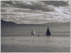 My sail just needs to open (undefinable moods) Tags: sailing boats sea water lake love clouds sky mountains black white blackwhite sailboat open day sail cloudscape skyscape seascape outside seaside mono melancholy poetry ciel ship journey vacation travel bnw eau weather bw vintage retro