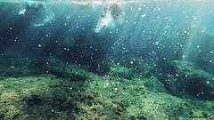 Swimrun Oeil de Verre Grotte Bleue octobre 201700046 (swimrun france) Tags: calanques provence swimming swimrun trailrunning training entrainement france