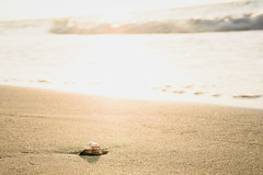 Varadero (Sean Sweeney, UK) Tags: nikon dslr d750 varadero cuba caribbean island iberostar hotel view travel photography photo beach sea shell sand