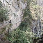Inca Bridge thumbnail
