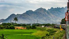 The massive background of hill ranges in Nagercoil Town ! (Vijesh Kannan) Tags: indianrailways southindia incredibleindia indianphotography indianvillage rural train intercity trivandrumtiruchyintercity goc wdp4d nagercoiltown tirunelveli tamilandu