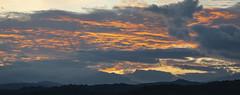 Amanecer (José M. Arboleda) Tags: paisaje árbol bosque montaña silueta amanecer cielo nube arrebol alborada salidadelsol mañana madrugada popayán colombia canon eos 5d markiv ef70200mmf4lisusm josémarboledac