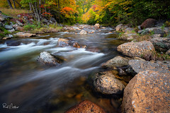 Fall Stream along Kancamagus Hwy NH (Reid Northrup) Tags: autumn fall colors forest trees water river cascades stream rocks nature landscape newhampshire rrs nikon reidnorthrup whitemountains kancamagushighway