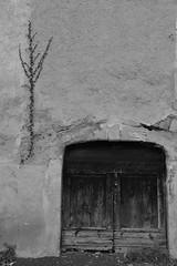 Porte à Montjaux (Michel Seguret Thanks for 12,9 M views !!!) Tags: france aveyron montjaux porte door mur wall automne autumn fall bw nb michelseguret nikon d800 pro