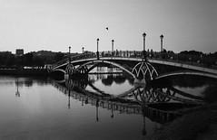 ... (Natasha Buzina) Tags: tsaritsyno bridge park film blackandwhite rollei olympusmjuii пленка