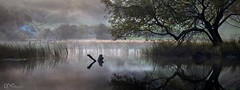 Hartsop Misty Morning (Dave Massey Photography) Tags: lakedistrict hartsopdodd cumbria