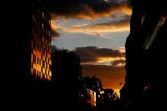 Rue d'Avron (Calinore) Tags: france paris city ville light lumiere sunset coucherdesoleil architecture evening soir avron xxeme 20emearrondissement