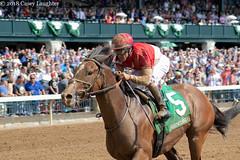 Winner (Casey Lynn Photos) Tags: 2018copyright horse racing horseracing horserace horseracingnation canon canon7dmii canonphotography canonusa tamron tamronlens keeneland kentucky lexington