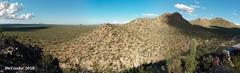 Panorama Saguaro (dr_cooke) Tags: panorama saguaro tucson arizona desert national park