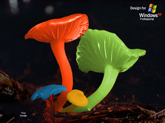 3d_kartinki41 (aera201) Tags: abstractions yellow woods woodchip vivid vibrant trees toadstools toadstool stumps stem soft scenery saffron poisonous plant photo outdoor orange nature natural mushrooms mushroom medium luminescent long light landscapes landscape jackolanterns jackolantern inedible humus horizontal high grow ground golden glowing glow gill fungus fungi four forest food focus fluorescent edible dirt depth decayed deadly daytime day curve cropped cool contrast colourful colorful cluster clean chanterelle center cap bright ss970011336 highresolutionrgb naturalbeauty