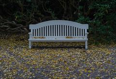 October in the Krapperup castle park (frankmh) Tags: bench seat park krapperup krapperupcastlepark skåne sweden october