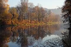autumn scene (daimak) Tags: autumn lithuania europe fall reflection morning sunrise sonyilce7