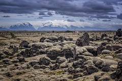 view on Skaftafell massive (Wim van de Meerendonk, loving nature) Tags: wimvandem iceland lava fields lavafields mountains outdoors clouds cloud rocks skaftafell ngc golddragon