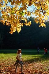 "Autumn in the park (Piotr Tylski) Tags: fujifilmxe1"" fuji poland polska wejherowo landscape vacations nature art europe travel macphun luminar skylum girl autumn leaves"