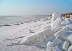 10064568 (aniaerm) Tags: snow ice frost