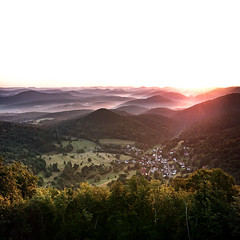 Awakening (Fabian Fortmann) Tags: sony xperia smartphone nothweiler wegelnburg sunrise summer fog nebel sonnenaufgang