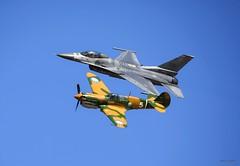 NASJAX 19 (work4u) Tags: airplane plane work4u f16 fighterjet curtissp40warhawk