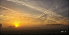 Jet Planes. (Picture post.) Tags: landscape nature green sunrise mist fields contrails trees paysage brume bluesky