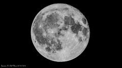 Nuit de pleine Lune - 5938 (ΨᗩSᗰIᘉᗴ HᗴᘉS +37 000 000 thx) Tags: today moon moonlight fullmoon p1000 nikonp1000 coolpixp1000 hensyasmine namur belgium europa aaa namuroise look photo friends be wow yasminehens interest intersting eu fr greatphotographers lanamuroise