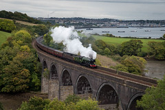 Flying Scotsman (Timothy Gilbert) Tags: tamar panasonic1235mmf28x viaduct flyingscotsman steamtrain train m43 microfourthirds lumix lovecornwall locomotive panasonic cornwall microfournerds gx8