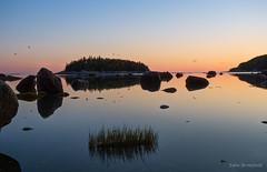 Twilight Dawn (Eden Bromfield) Tags: canada nature dawn twilight gulls ebbtide islands rocks reflections silence tranquility saintlawrencequebec landscape bicquebec molluscs bic