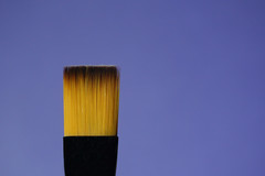 365 - Image 273 - Brush... (Gary Neville) Tags: 365 365images 5th365 photoaday 2018 sony sonycybershotrx100v rx100v v garyneville