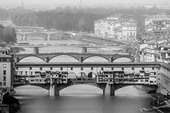 Bridges of Florence (pascalct) Tags: italie bw pontvecchio cityscape bridge pont florence pontevecchio arno