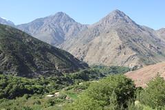 IMG_3917 (stevesquireslive) Tags: morocco atlas mountains