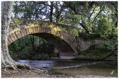 Promenade matinale (Gerline83) Tags: lacastille legapeau pont