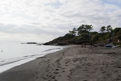 _DSC1494 (Romainounet) Tags: corse nature vert plage bleu ciel sable été septembre 2018 mer bateau