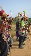 DSC02146 (revelinyourtime) Tags: gerewol tribe tribes africa chad tchad ciad festival dance tribal travel epic portraits people men women ceremony ritual black wodaabe sudosokai djepto