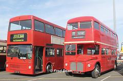 Malahide Coaches (B255WUL) & Dualway (ZV10657). (Fred Dean Jnr) Tags: dublin dublinportrally dublinportrally2015 malahidecoaches mcw metrobus b255wul dualway aec routemaster zv10657 dublinport september2015 82d8281 exlondontransport m1255 rml2432 jjd432d