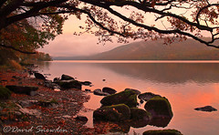 Coniston Water Evening (Dave Snowdon (Wipeout Dave)) Tags: davidsnowdonphotography canoneos1100d landscape lakedistrict lakedistrictnationalpark autumn fall conistonwater lake evening dusk rocks trees colour shore shoreline
