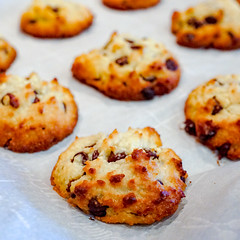 2018.10.21 Low Carbohydrate Chocolate Chip Cookies, Washington, DC USA 06685