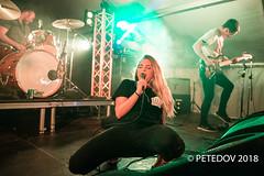 Press Club (PETEDOV) Tags: pressclub yoursandowls festival livemusic live musicphotography music peterdovgan petedov canon canonaustralia indie indierock livemusicphotographer