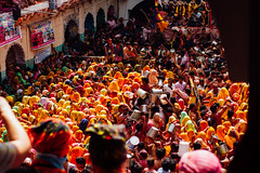 Buckets of Color, Shri Dauji Temple, Chhabria India (AdamCohn) Tags: 018kmtobaldevinuttarpradeshindia abeer adamcohn baldev chhabria india shridaujitemple uttarpradesh colors geo:lat=27408362 geo:lon=77821532 geotagged gulal holi play wwwadamcohncom अबीर गुलाल baldeo