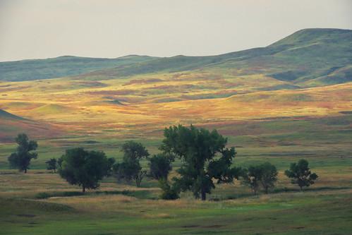 South Dakota Prairie on Wildlife Loop Road