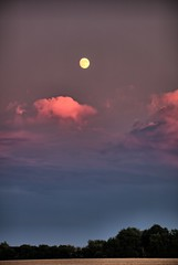 Moonrise at Sunset (Ray Cunningham) Tags: sunset illinois homer moon moonrise clouds pink