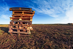 Pile Of Pallets On The Fields (k009034) Tags: 500px wooden copy space finland scandinavia tranquil scene agriculture autumn clouds countryside farm farming fields furrow morning nature no people old pallet pile rural scenic shadow sky tools field meadow grass horizon over land pasture cultivated teamcanon copyspace tranquilscene nopeople
