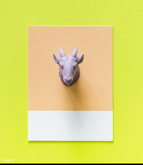 Colorful goat figure on a paper (Rawpixel Ltd) Tags: abstract animal background card colorful concept creative decoration figure fun goat joy lamb little mini miniature model name paper pattern play purple shape small symbol textured tiny toy yellow